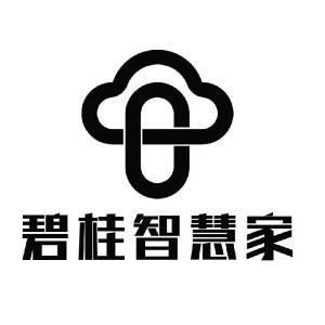 碧桂智慧家(通化)科技有限公司